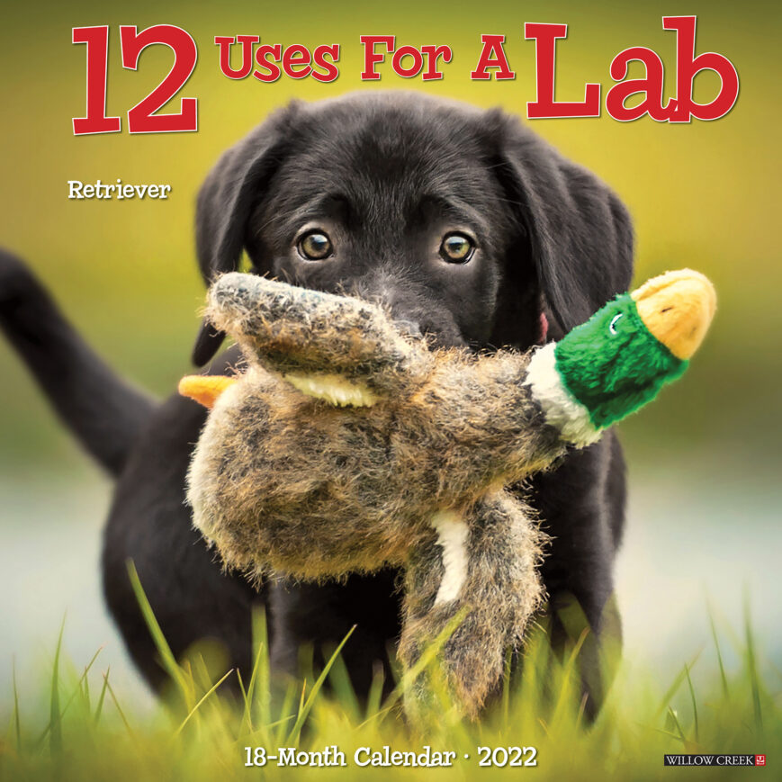 12 Uses for a Lab Kalender 2022