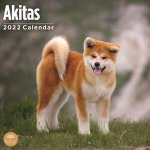 Akita Kalender 2022