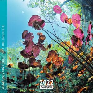 Amazing Nature Kalender 2022