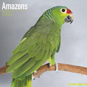 Amazone Kalender 2022