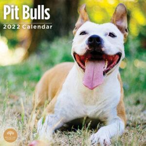 American Pit Bull Terrier Kalender 2022