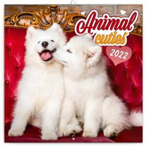 Animal Cuties Kalender 2022