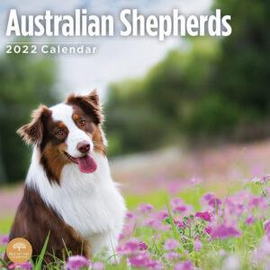 Australian Shepherd Kalender 2022