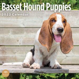 Basset Hound Puppies Kalender 2022