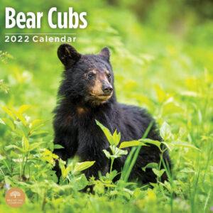 Bear Cubs Kalender 2022