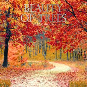 Beauty of Trees Kalender 2022