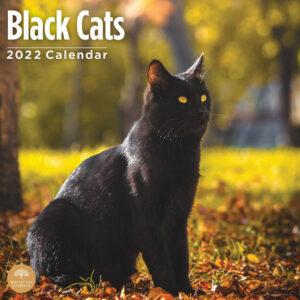 Black Cats Kalender 2022