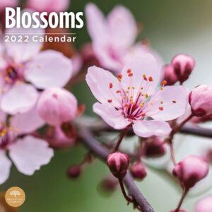 Blossoms Kalender 2022