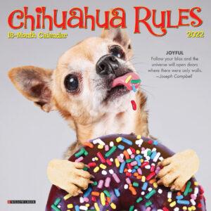 Chihuahua Rules Kalender 2022 Mini