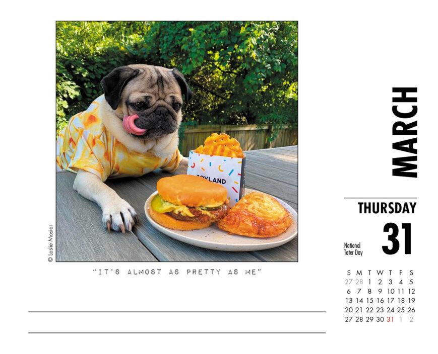 Doug the Pug Kalender 2022 Boxed