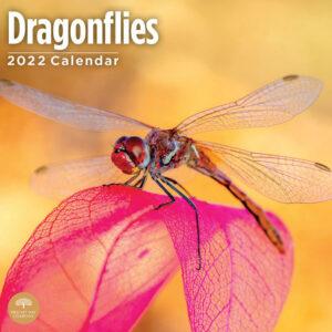 Dragonflies Kalender 2022