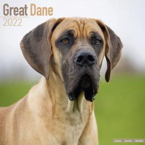 Duitse Dog Kalender 2022 (euro)