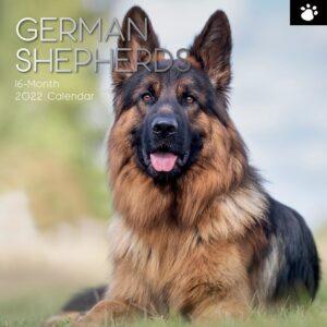 Duitse Herder Kalender 2022