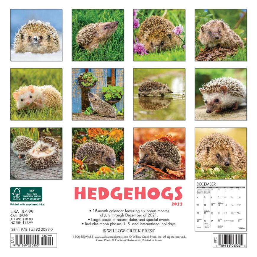 Egel Kalender 2022 Mini