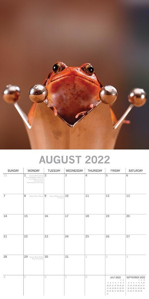 Fabulous Frogs Kalender 2022