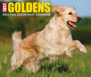 Golden Retriever Kalender 2022 Boxed