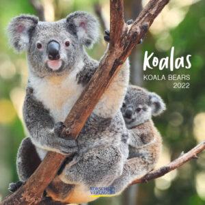 Koala Kalender 2022