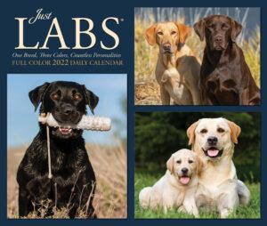 Labrador Retriever Kalender 2022 Boxed