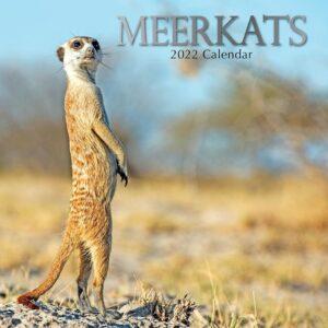 Stokstaartjes Kalender 2022