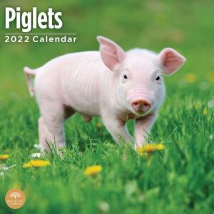Varken Kalender 2022