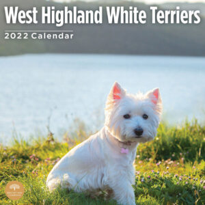 West Highland White Terrier Kalender 2022
