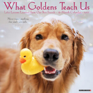 What Goldens Teach Us Kalender 2022