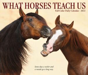What Horses Teach Us Kalender 2022 Boxed
