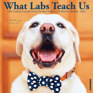 What Labs Teach Us Kalender 2022