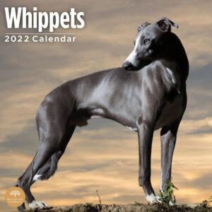 Whippet Kalender 2022