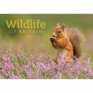 Wildlife Of Britain A4 Planner 2022
