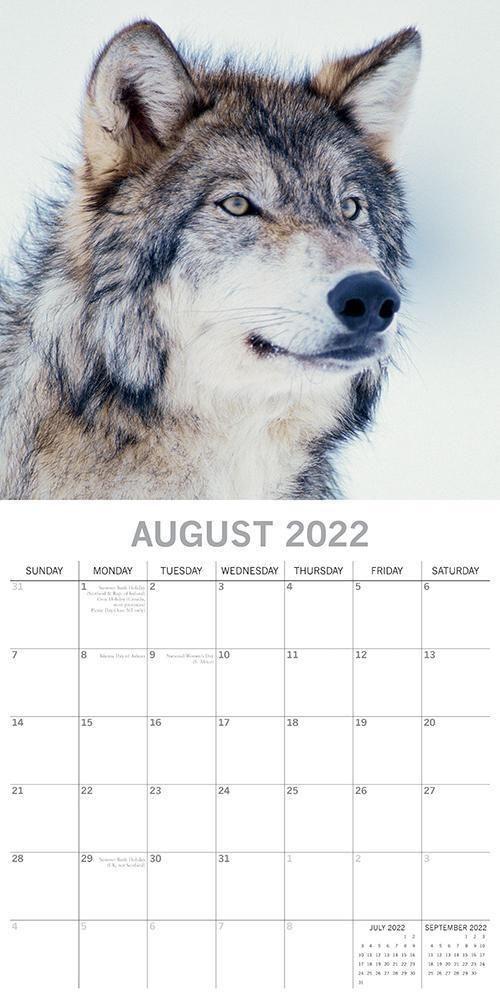 Wolven Kalender 2022