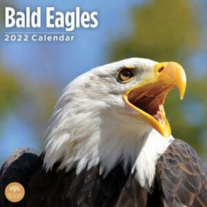 Zee Arend Kalender 2022