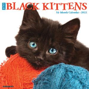 Zwarte Kittens Kalender 2022